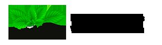 Создание интернет-магазинов детских товаров ★ WildMint.ru ★ since 2003